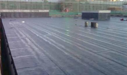 房顶漏水是当代的房子的较大的常见问题之一